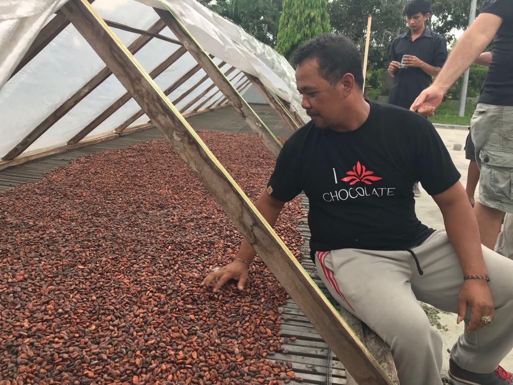 Petani Senang Kakao-nya Mendunia (3)